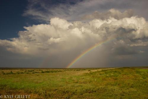 Decaying storm with vibrant rainbow over eastern Colorado. May 2019 - Kyle Gillett